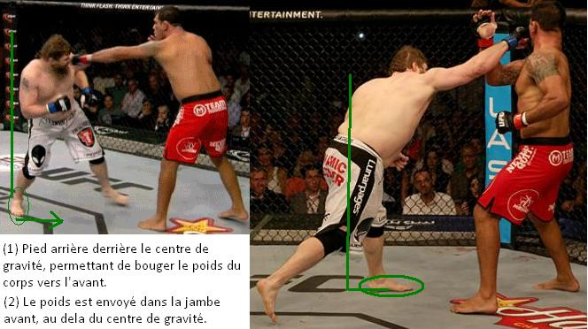 Explication du coup de Roy Nelson sur Big Nog